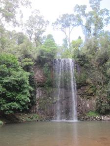 Die Millaa Millaa Falls, in der Regenzeit sind sie eindrucksvoller, wie wir auf vielen Fotos gesehen habe.